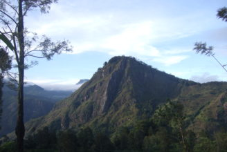 Nuwara Eliya & the Hill Country | The Earth Trip - Tailor
